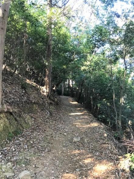 大平山 山道1